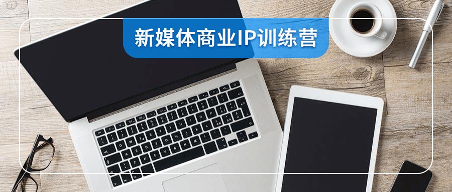 新媒体商业IP训练营视频-云奇网