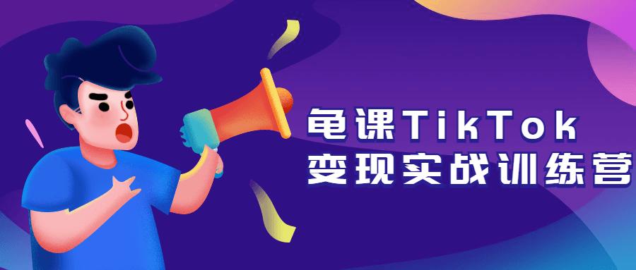 龟课TikTok变现实战训练营-云奇网