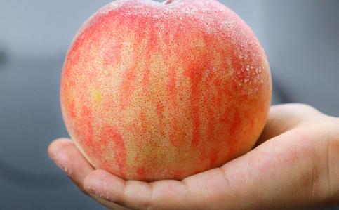 白凤水蜜桃几月成熟1
