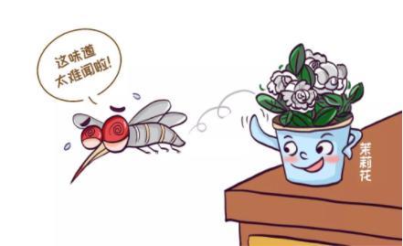 蚊子喜欢咬什么人1