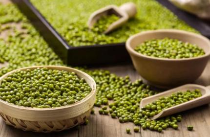 绿豆的功效与作用1