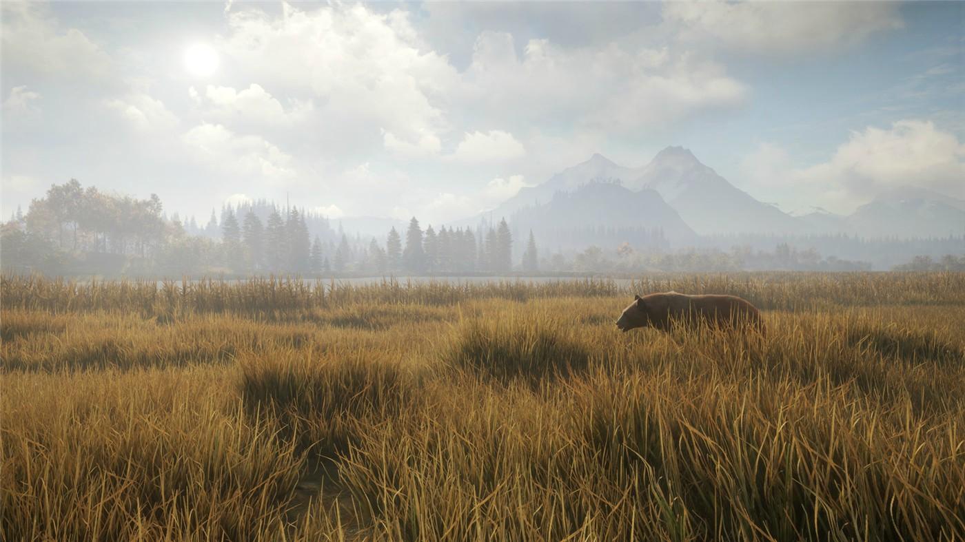 《猎人:野性的呼唤》v2071465-云奇网