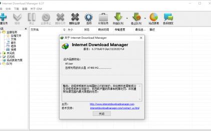 IDM v6.38.3绿色版不限速下载工具