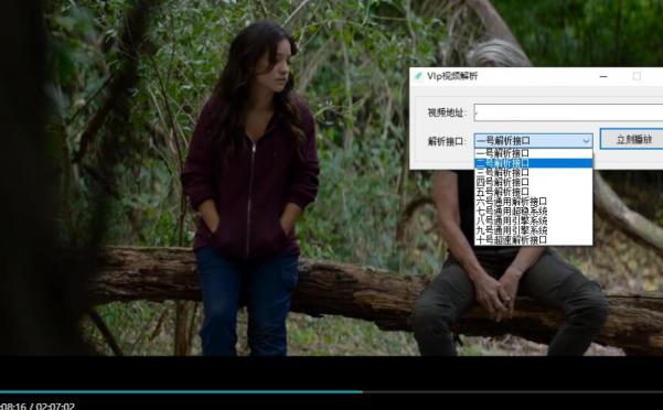 VIP视频解析源码附10个免费接口