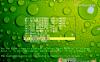 Windows XP/2003纯净版镜像