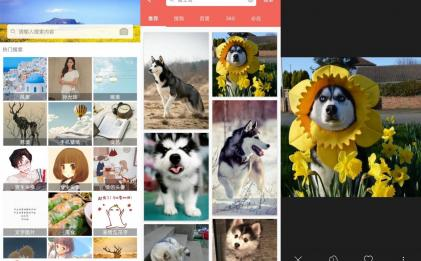 图片大全搜图v2.7.0去广告版