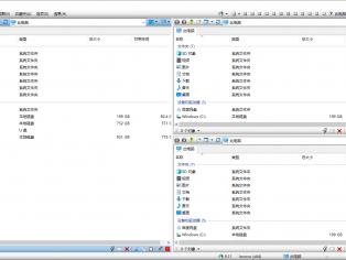 多窗口资源管理器Q-Dir v9.11