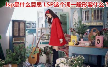 lsp是什么意思 LSP这个词是形容什么的?