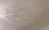 天花板发霉直接刮一遍腻子粉可以吗