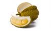 榴莲上面的黄粉是什么