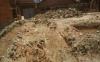 挖地基挖出蛇是福是祸