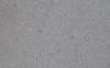 白蚁会吃水泥墙吗