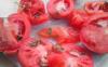 西红柿里面长绿芽还能吃吗