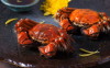 吃螃蟹后喝红糖水可以暖宫吗